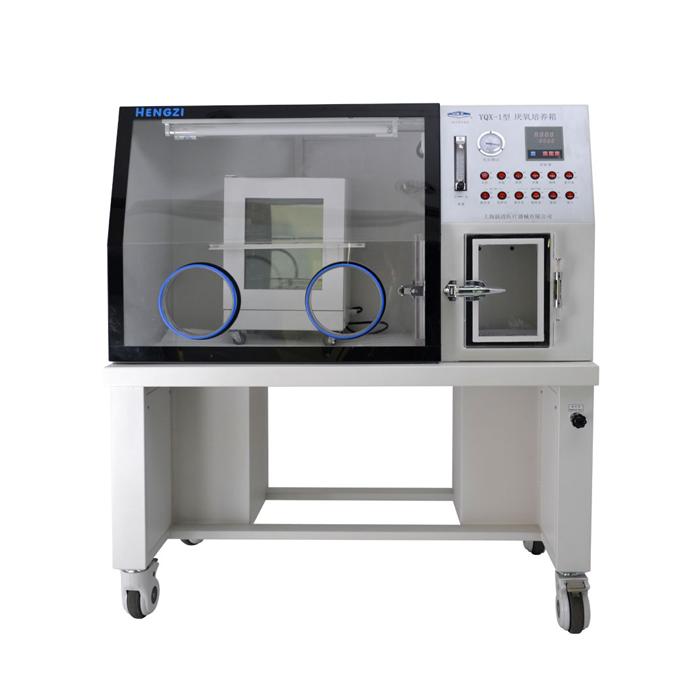 上海跃进HYQX-II厌氧培养箱(非医疗液晶屏)